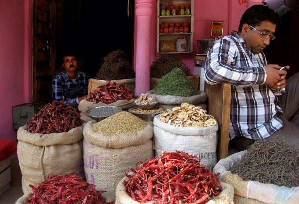 India traders chilli bags